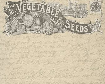 Spring Vegetable Seeds